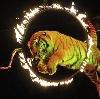 Цирки в Ржанице